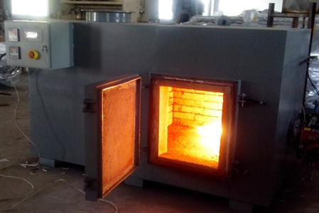 Incinerator with Capacity of destruction in weight: 60 Kg/h.